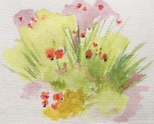 Pochade, fleurs sauvages d'Abitibi, aquarelle sur papier