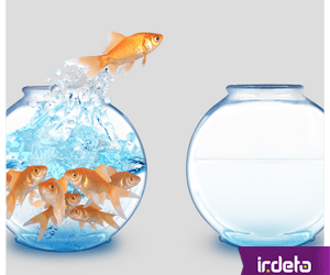 Break free – hand off complexity to focus on your core business