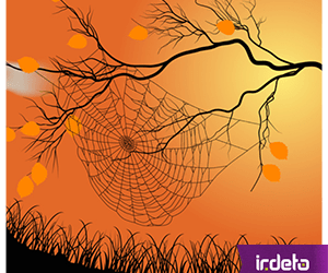 Software Protection is Like a SPIDER Web…
