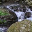 高知 滝 平家の滝