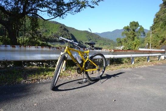 新荘川 自転車
