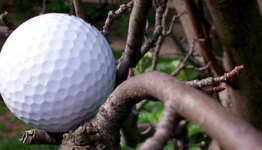 golf working around tree shots