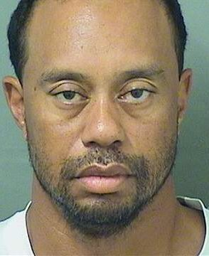 tiger woods incident