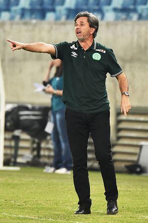 ブラジルのサッカーチーム「シャペコエンセ」のカイオ・ジュニオール監督=8月25日、クイアバ(AFP=時事)