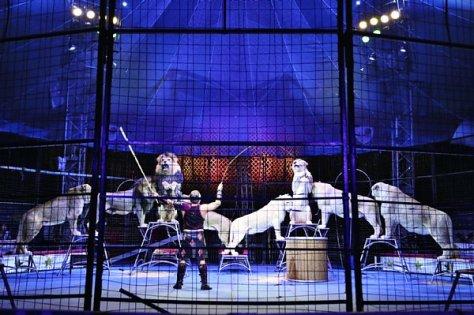 【「奇跡のホワイトライオン世界猛獣ショー」には希少なホワイトライオンも登場】