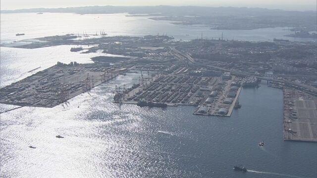 ヒアリ 横浜港で500匹以上確認