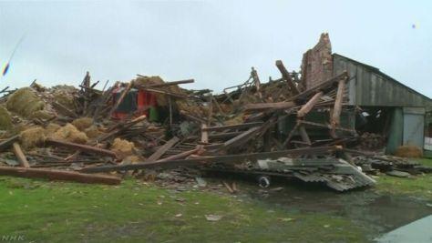 ポーランド 暴風雨で5人死亡30人以上けが