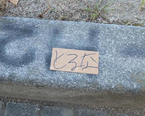 歩道の縁石などに貼られた粘着テープには「とるな」の文字が…=8日、岸和田市