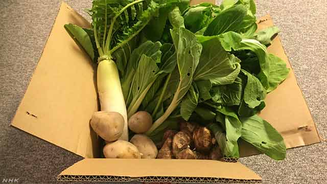 News Up まじでメルカリで野菜売ってるー! | NHKニュース