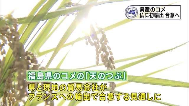 福島県産のコメ 仏へ初輸出で合意へ | NHKニュース