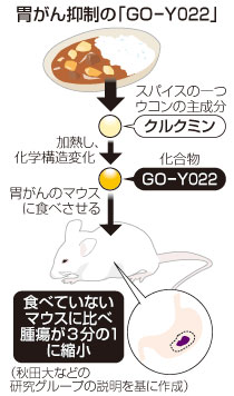 胃がん抑制の「GO-Y022」