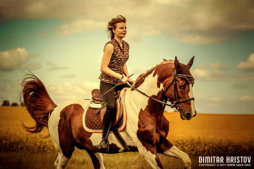 Wallpaper Cowboy Girl Girls Riding Horse In Beautiful Meadow 54ka Photo Blog