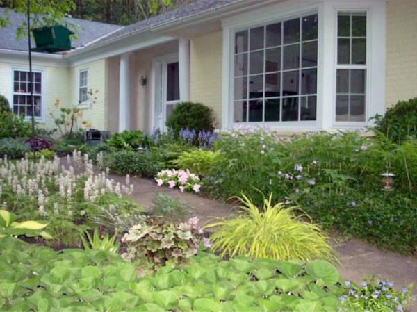 cost-effective front yard landscape