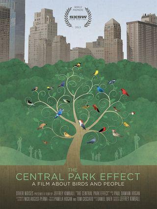 Centralparkeffect-18x24_web