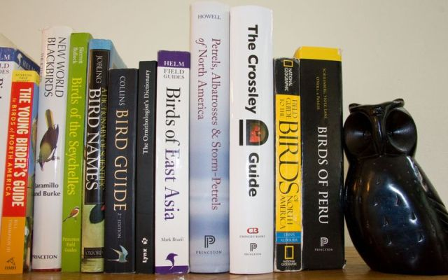 Books image_MG_5612