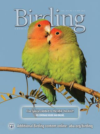 Birding 12-6 cover - front only