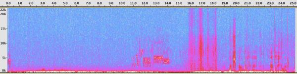09-Lark Sparrow spectrogram