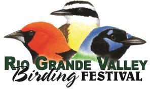 November 2–6, 2016