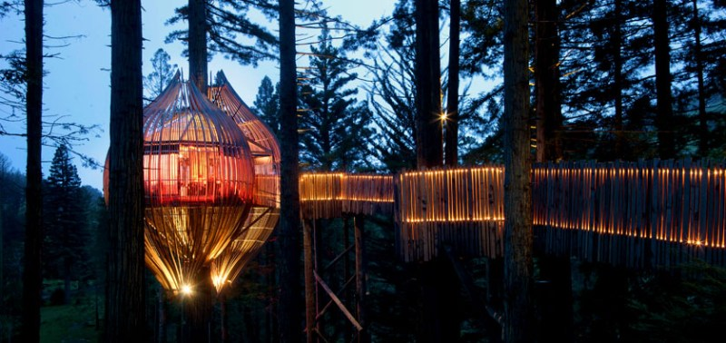 Treehouse-in-New-Zealand-Yellow-treehouse-by-pacific-environment-architects-011
