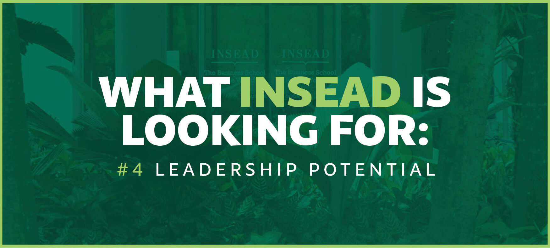 INSEAD is looking for leadership potential
