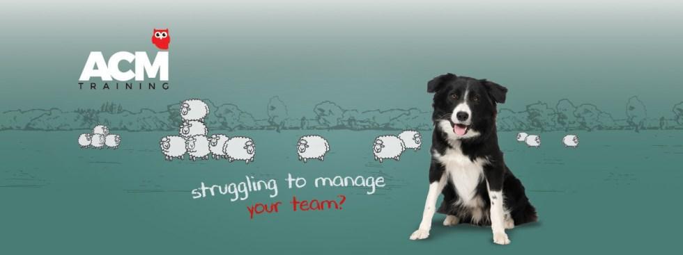 Managing difficult teams
