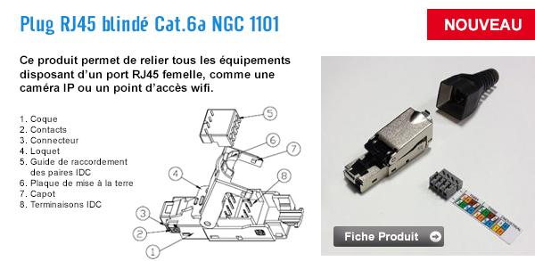 ngc1101