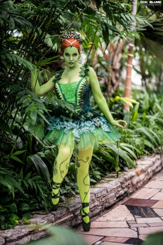 3d Hd Lab Wallpapers Ballerina Poison Ivy Costume 171 Adafruit Industries