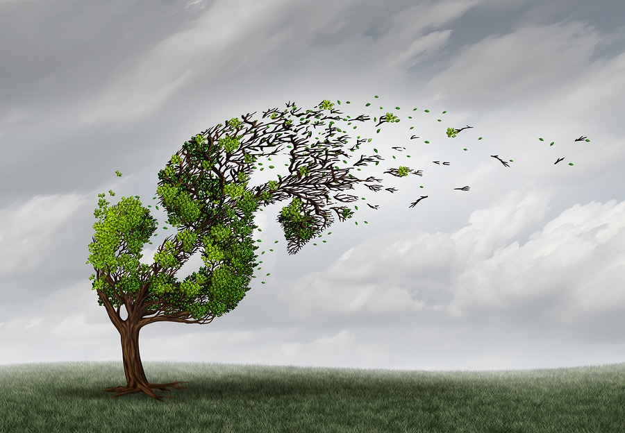 Financial trouble and money adversity or economic crisis concept as a tree being blown by the wind and damaged or destroyed by the force of a storm as a business crisis metaphor with 3D illustration elements.