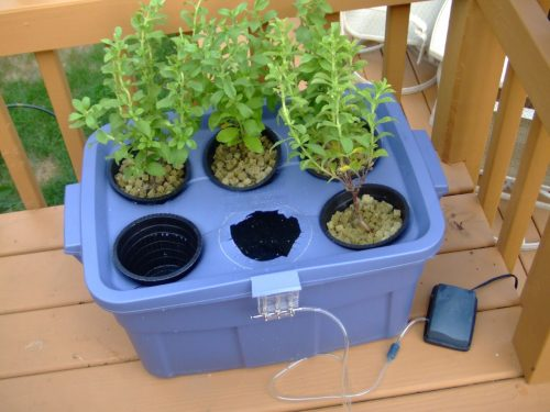 Do It Yourself Hydroponic Systems
