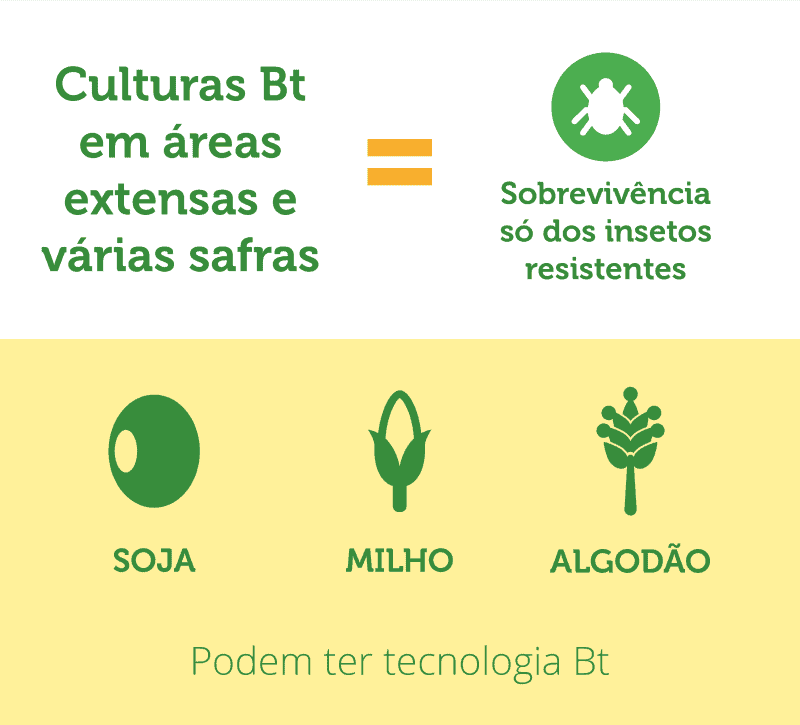 tecnologia-bt