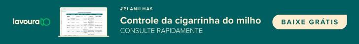 planilha controle da cigarrinha do milho