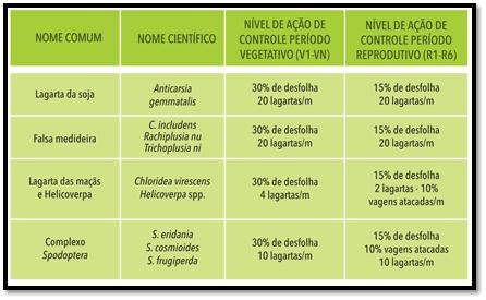 3-inseticidas-nc
