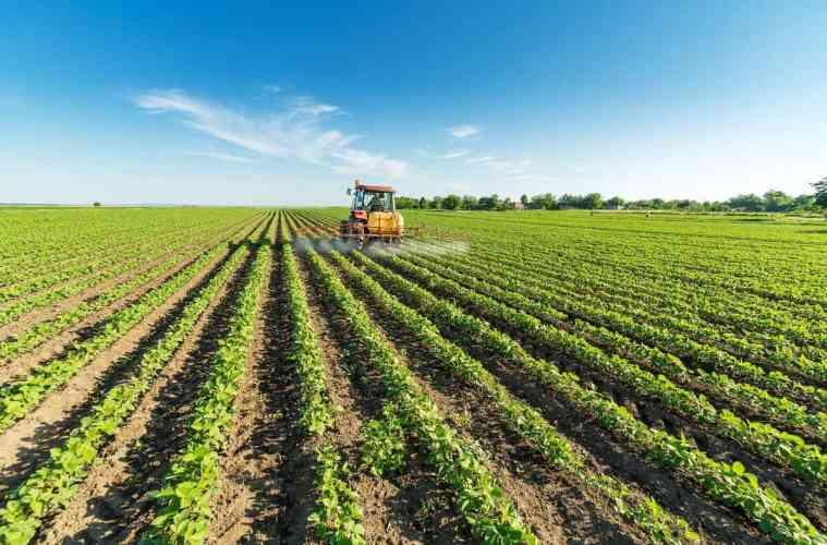 fungicidas da cultura da soja