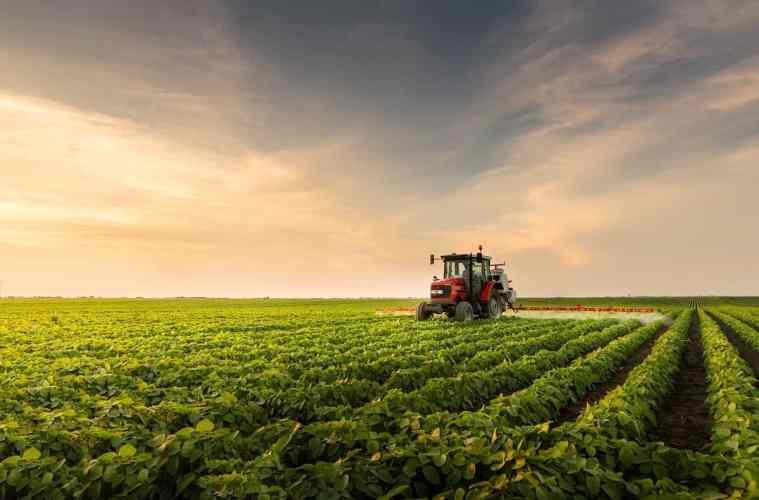 residual de herbicidas