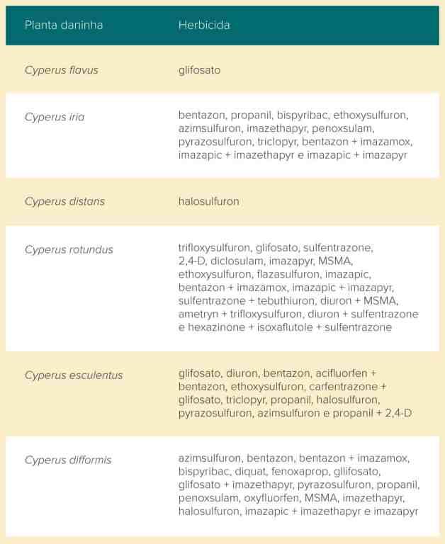 tabela com os principais herbicidas utilizado no controle de tiririca para cada espécie