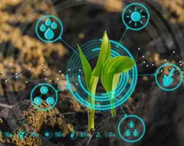agricultura digital e planejamento safra