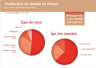 Production viande chevaline France 2014