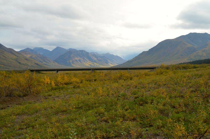 Alaska Adventure - Denali National Park