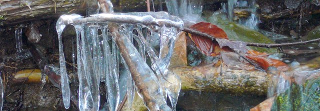 WS ice3