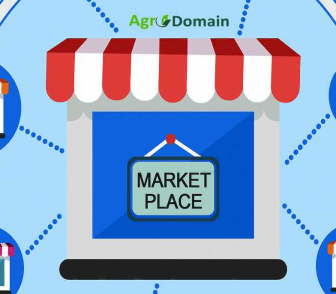 How to Post an Offer on AgroDomain Marketplace Platform