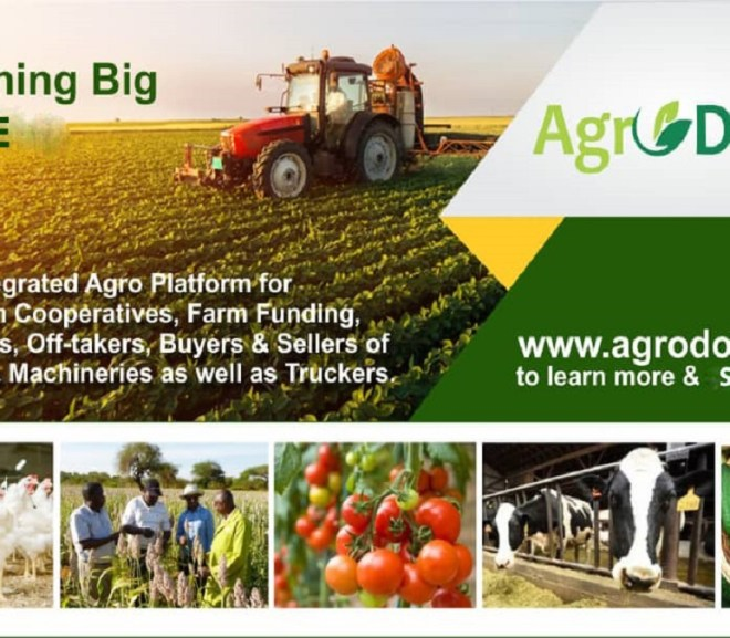 The AgroDomain Marketplace