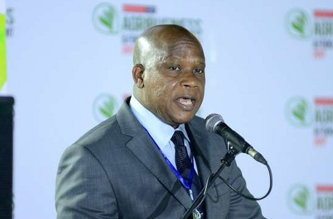 NIRSAL Reveals Plans To Lift 8 Million Farmers Out Of Poverty