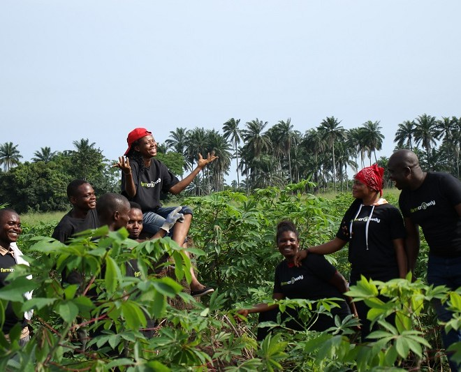 Crowdfarming: How AgroDomain Is Promoting Financial Inclusion In Nigeria's Agriculture Sector
