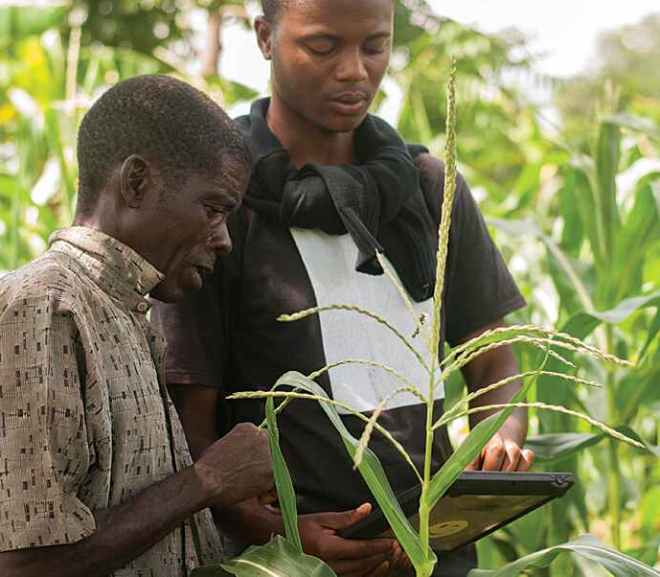 Empowering Smallholder Farmers in Africa Key to Success