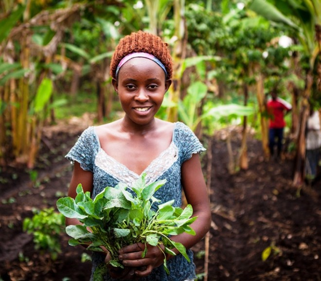 Reasons to embrace Agriculture in Africa