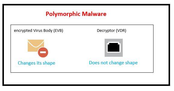 polymorphic or metamorphic malware 5