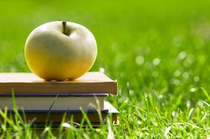 Apple on pile of books on grass. Education concept, back to scho