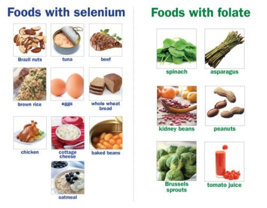 What Foods Contain Selenium And Zinc