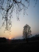 Foto von Sonnenuntergang