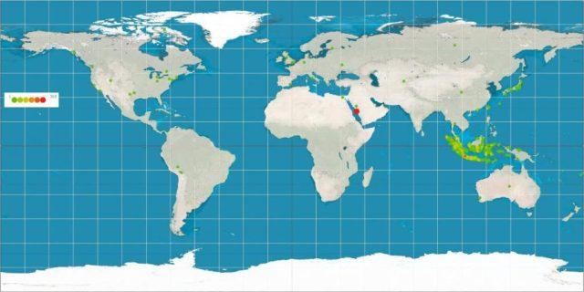 Peta dunia yang menunjukkan kota-kota di mana jadwal imsakiyah ramadhan 1438 H telah dibuat. Terlihat tidak hanya kota-kota di Indonesia yang telah memanfaatkan layanan ini, tetapi juga kota-kota lain di seluruh dunia. Bahkan, jadwal imsakiyah ramadhan untuk kota Mekah termasuk yang paling sering diunduh.